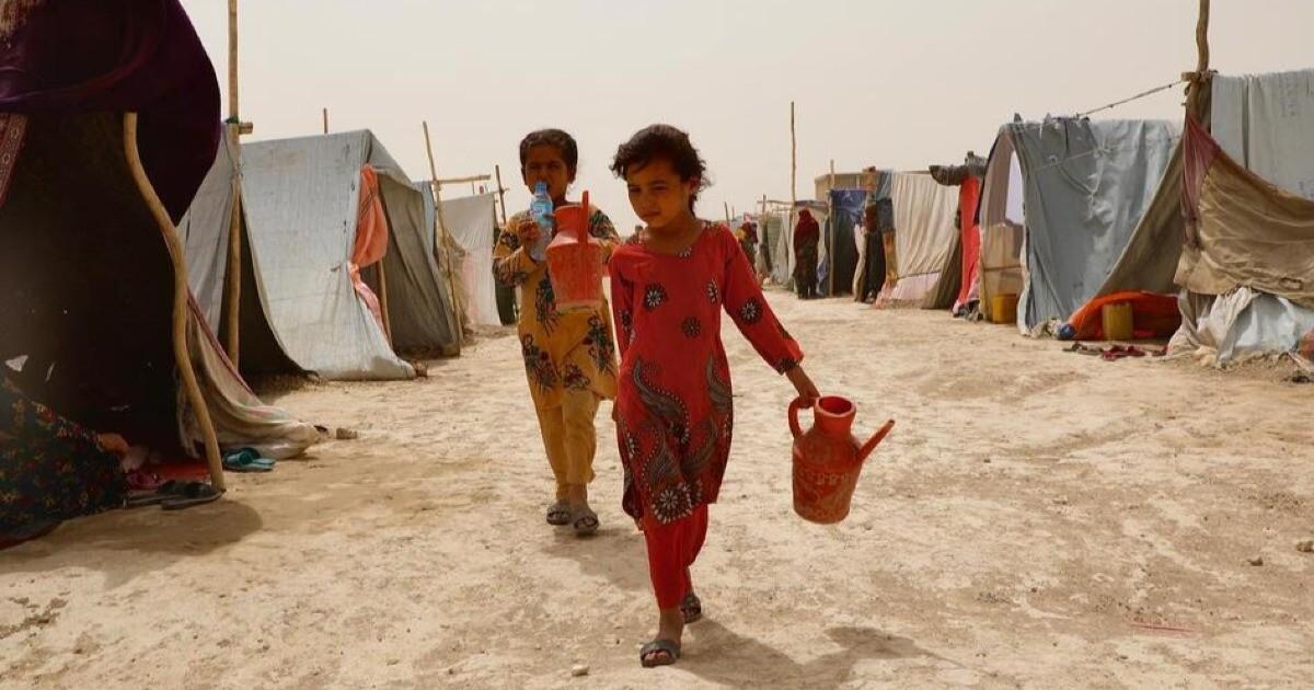Rete del Dono - Emergenza Afghanistan a favore di UNHCR