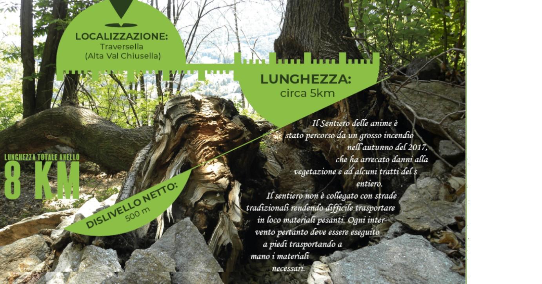 #THEFORESTPATH - IL SENTIERO DELLE ANIME-Consorzio Forestale del Canavese