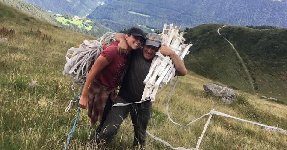 Lupo e orso: una storia a lieto fine!-Eliante
