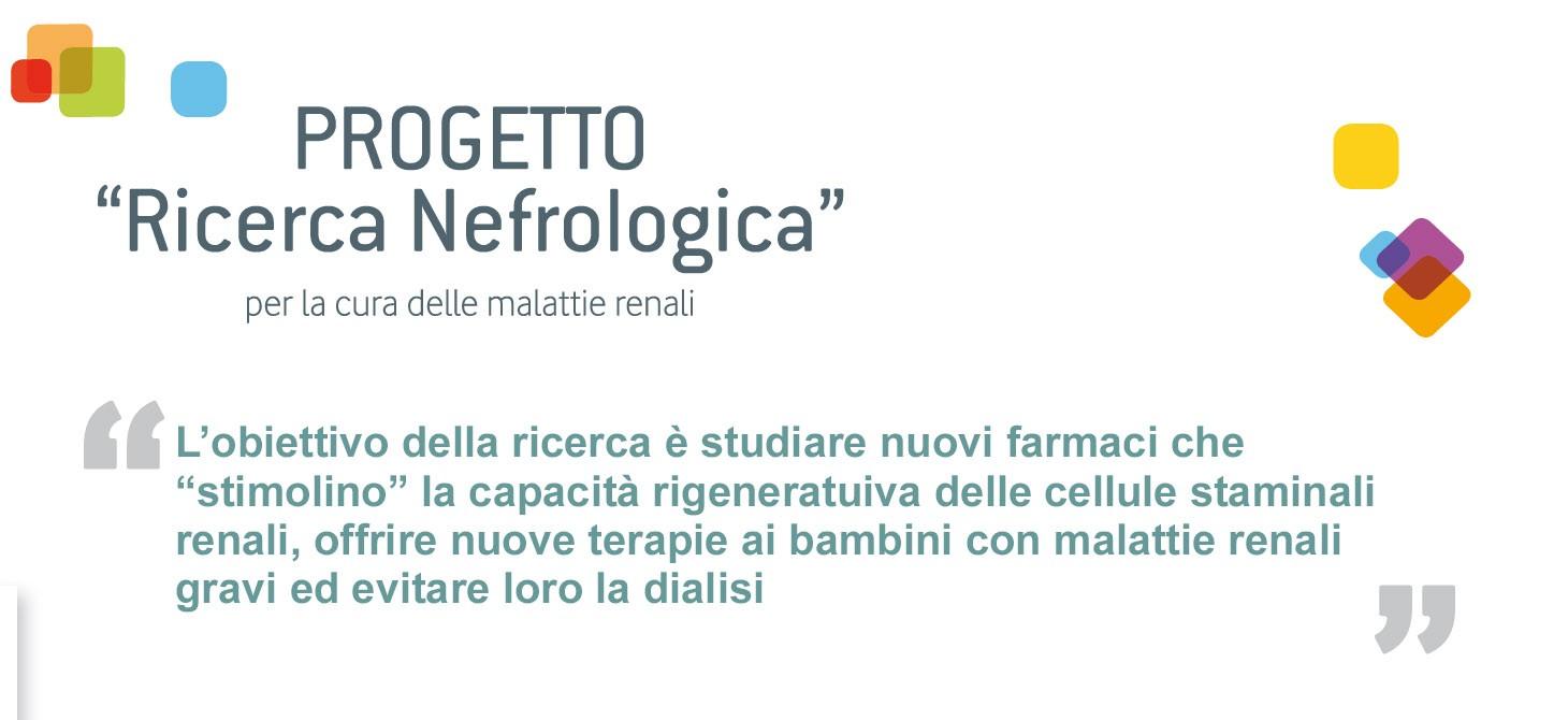 Ricerca nefrologica-Fondazione Meyer