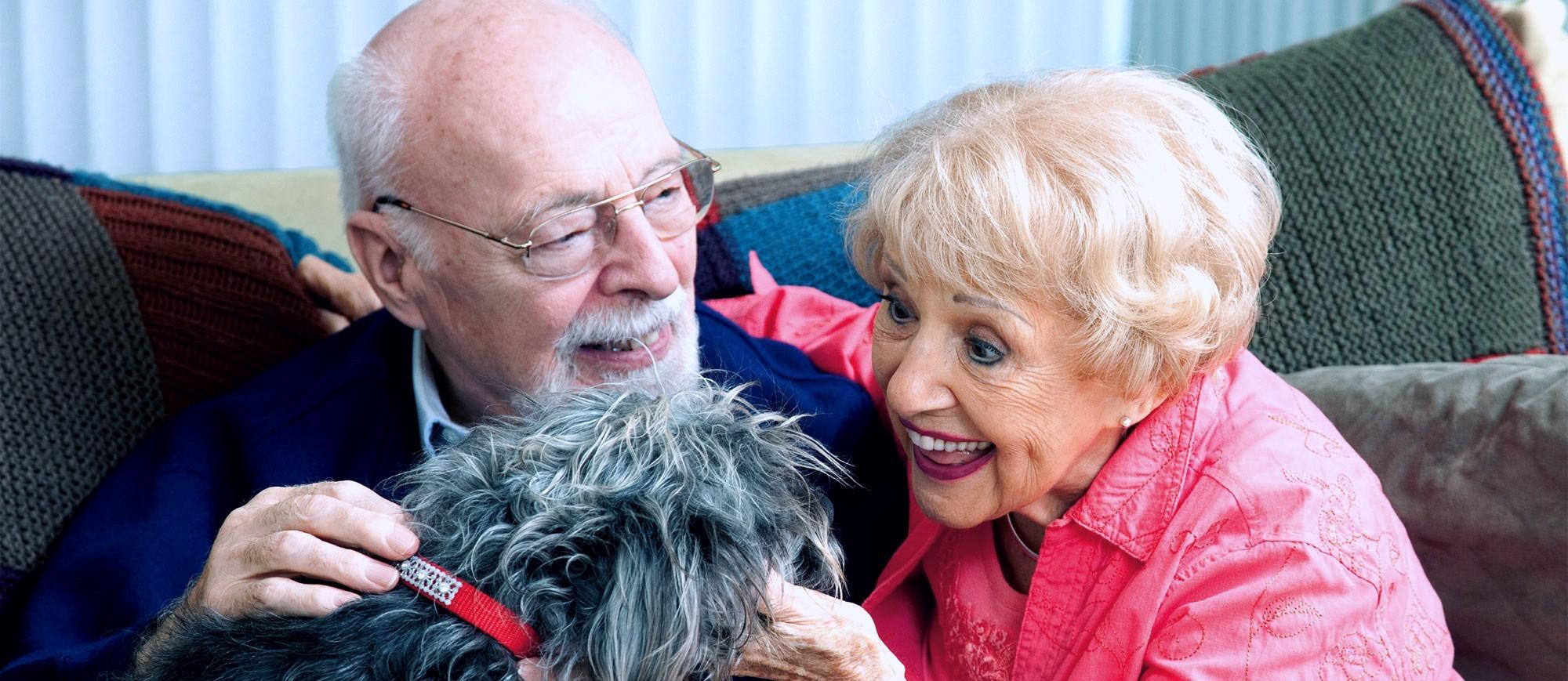 QUA LA ZAMPA! Pet Therapy vs Alzheimer-Piccolo Principe ONLUS
