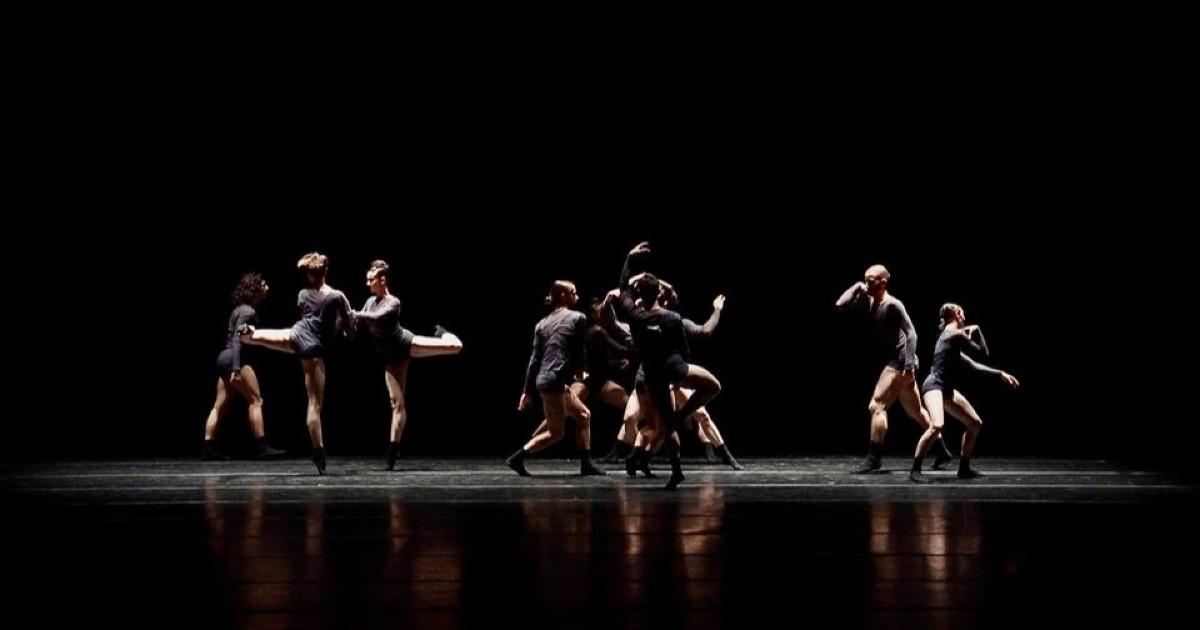 Rete del Dono - Una nuova vita. Danza in Rete Festival